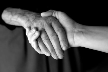 Partnership between new and seasoned sign language interpreters